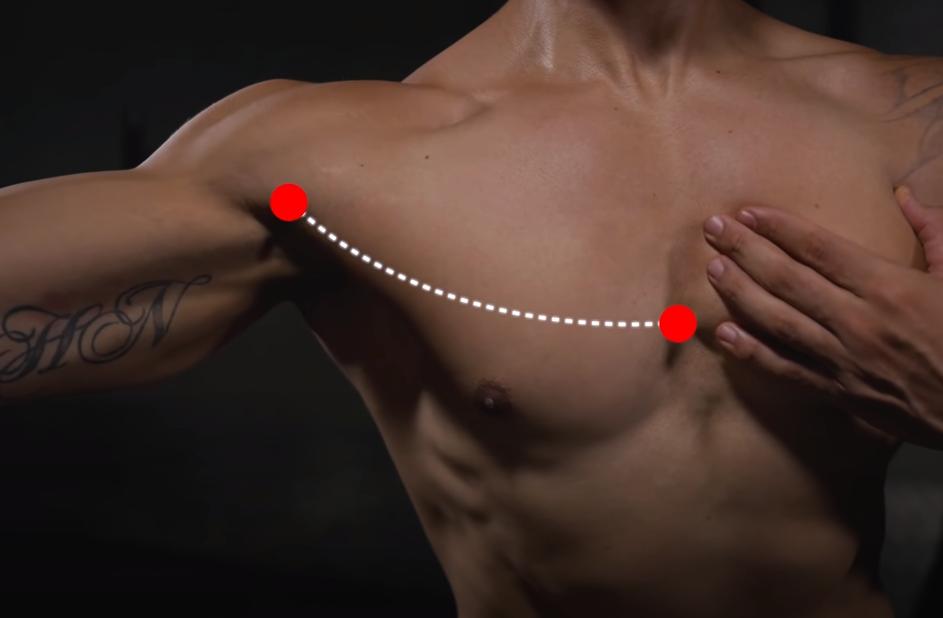 ganar masa muscular en el pecho | estirar y contraer pecho - tr4iner